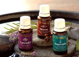 favorite Young Living essential oils